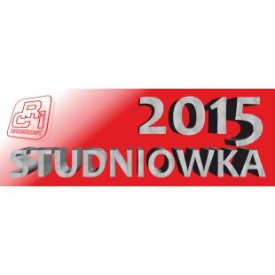 ANDRZEJKI SYLWESTER STUDNIÓWKA 2015 litery dekoracja styropian napisy
